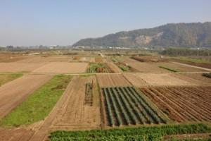 田舎の土地を有効活用する方法