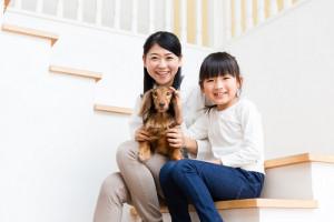 ペット可のアパート・マンションを経営するメリットとデメリット