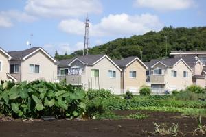 農地(田んぼ・畑)の有効な土地活用方法とは